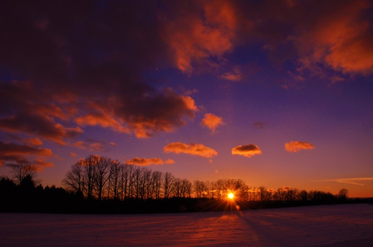 Snow covered fields in King Ferry, NY at sunset.  Photo credit: Michelle Miller